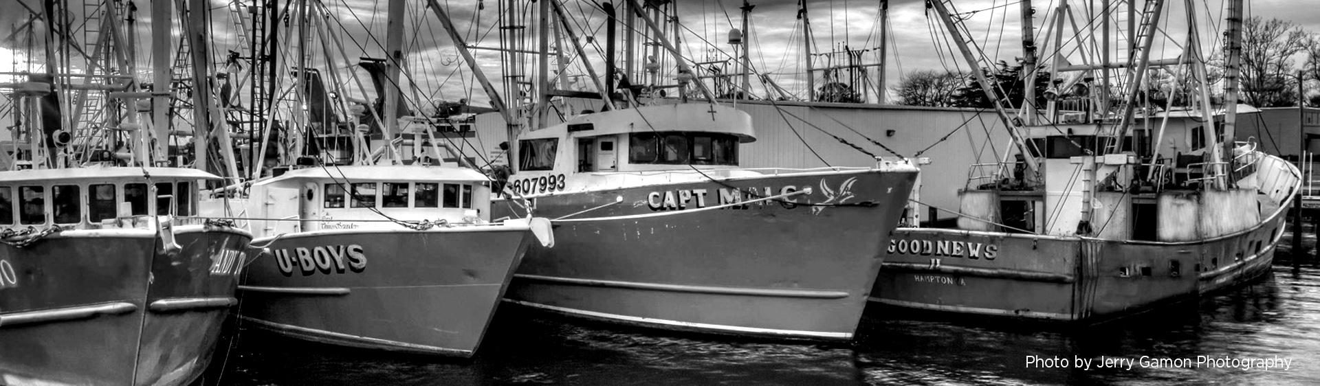Wanchese Fish Company History