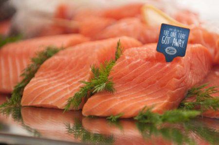 history-salmon